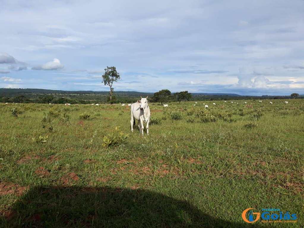 Fazenda em Cassilândia, no bairro Area Rural