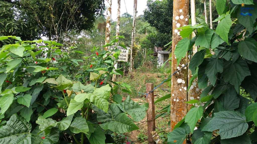 Terreno Comercial em Ubatuba, bairro Praia Enseada
