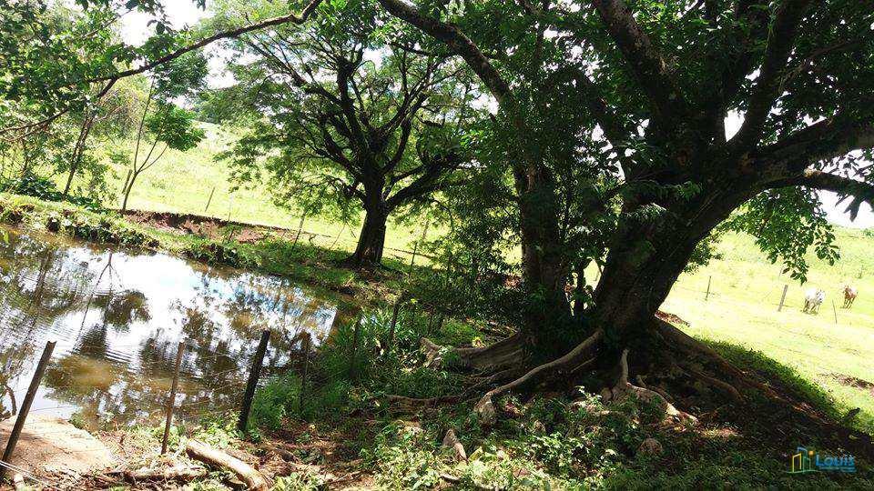 Sítio em Leópolis, no bairro Zona Rural