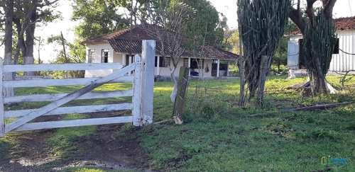 Sítio, código 254 em Uraí, bairro Zona Rural