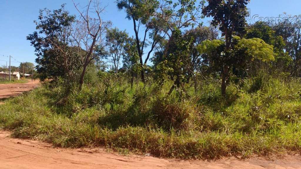 Terreno em Campo Grande, no bairro Jardim Noroeste