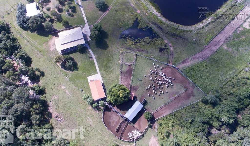 Fazenda em Porto Murtinho, bairro Centro