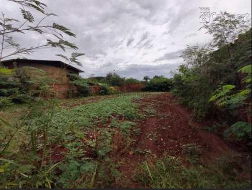 Terreno Comercial, código 840 em Campo Grande, bairro Vila Nossa Senhora das Graças