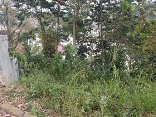 Terreno, código 344 em Nova Friburgo, bairro Conselheiro Paulino