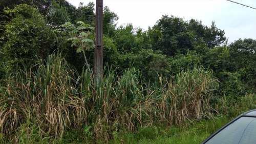 Terreno, código 559 em Itanhaém, bairro Balneário Diplomata