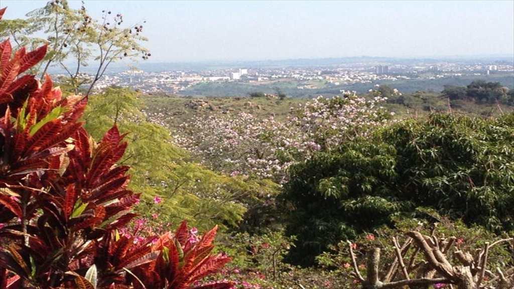Sítio em Itu, bairro Pedregulho