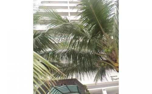 Apartamento, código 2421 em Praia Grande, bairro Aviação