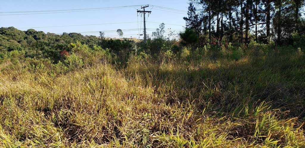 Terreno Industrial em Pouso Alegre, no bairro Distrito Industrial
