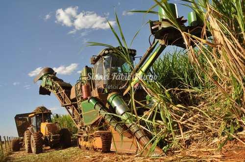 Fazenda, código 153 em Araçatuba, bairro Área Rural de Araçatuba