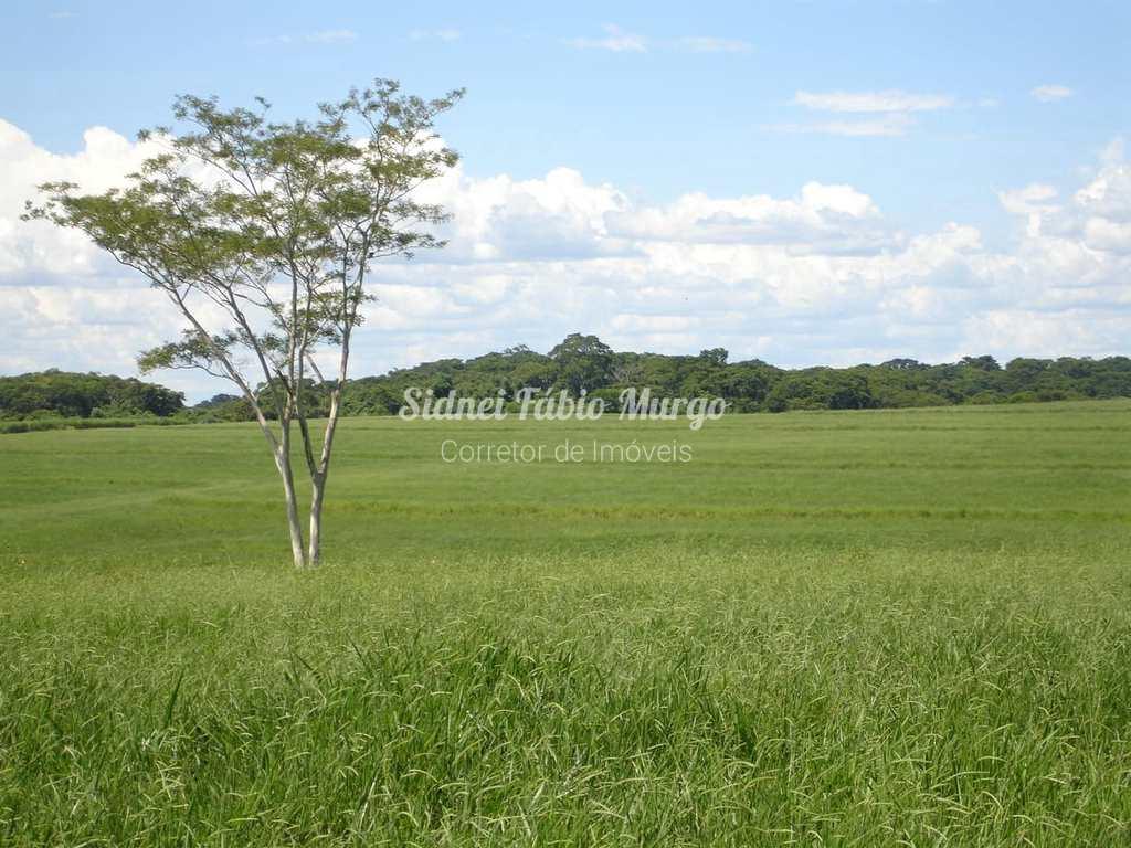 Fazenda em Guaimbê, no bairro Área Rural