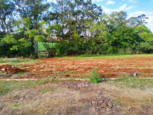 Terreno, código 83 em Três de Maio, bairro Bairro Medianeira