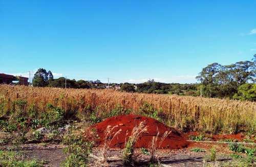 Terreno, código 92 em Três de Maio, bairro Bairro Medianeira