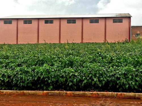 Terreno, código 132 em Três de Maio, bairro Bairro Planalto