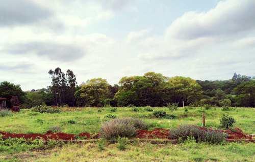 Terreno, código 287 em Três de Maio, bairro Bairro Medianeira