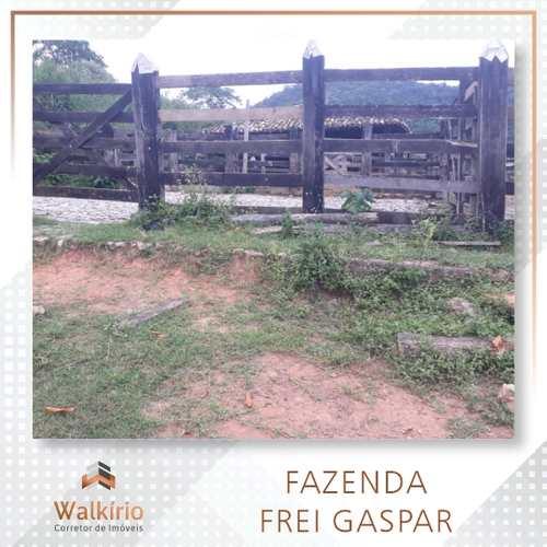 Fazenda, código 355 em Frei Gaspar, bairro Frei Gaspar