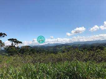 Terreno, código 277 em Santo Antônio do Pinhal, bairro Aproxi 10 Km do Centro