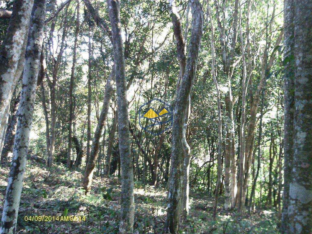 Terreno Rural em Itapecerica da Serra, no bairro Lagoa
