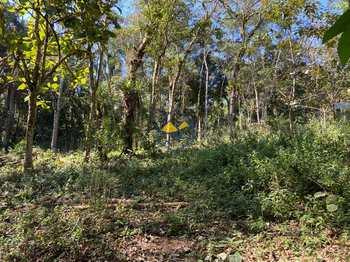 Terreno, código 4570 em Itapecerica da Serra, bairro Palmeiras