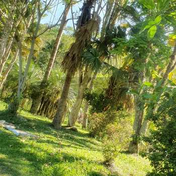 Sítio em Salesópolis, bairro Cha