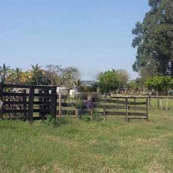 Sítio em Saltinho, bairro Zona Rural