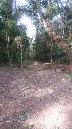 Sítio, código ST002 em Morungaba, bairro Bairro dos Silvas