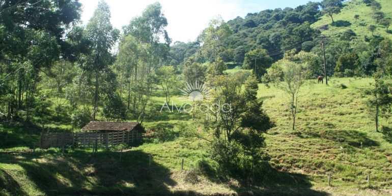 Sítio em Cambuí, no bairro Área Rural