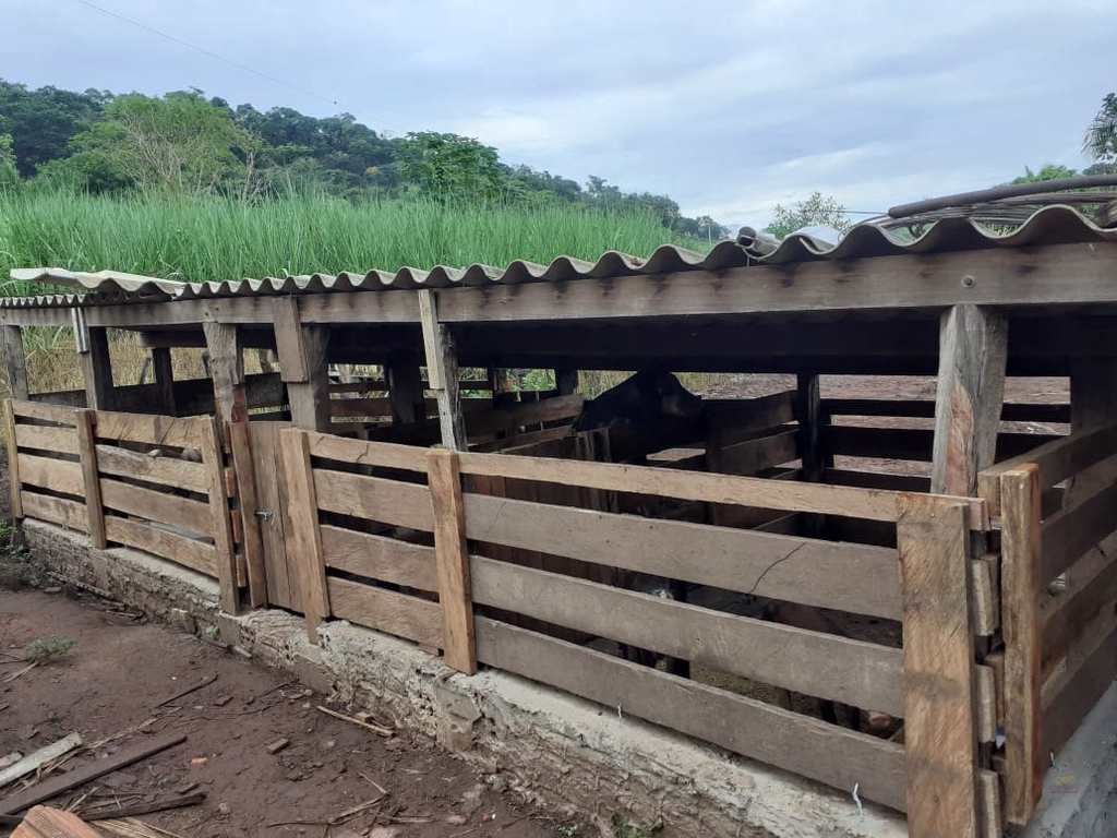 Chácara em Dom Aquino, no bairro Rural