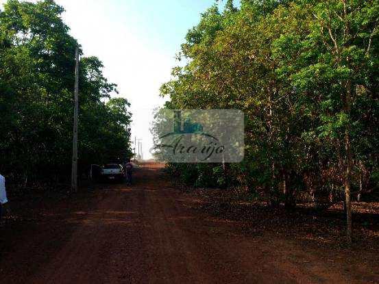 Terreno em Porto Nacional, no bairro Setor Central