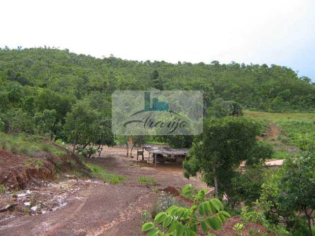 Fazenda em Almas, no bairro Rural