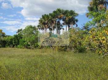 Fazenda, código 81 em Ponte Alta do Tocantins, bairro Rural