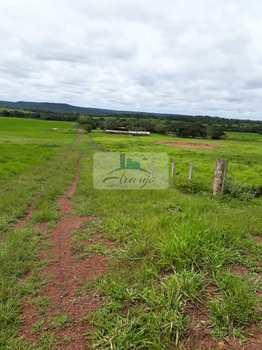 Fazenda, código 224 em Pedro Afonso, bairro Rural