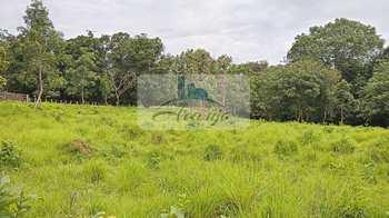 Fazenda, código 436 em Palmas, bairro Área Rural de Palmas