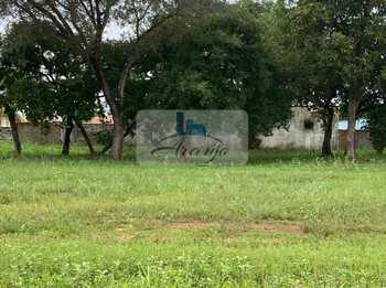 Terreno Comercial, código 461 em Palmas, bairro Plano Diretor Sul
