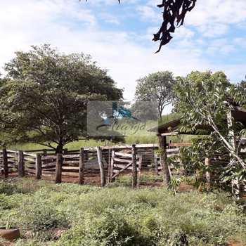 Fazenda em Aparecida do Rio Negro, bairro Setor Central