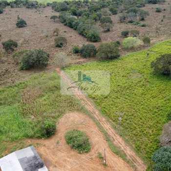 Fazenda em Palmas, bairro Área Rural de Palmas