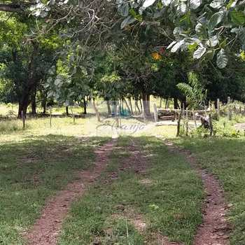 Fazenda em Dois Irmãos do Tocantins, bairro Setor Central