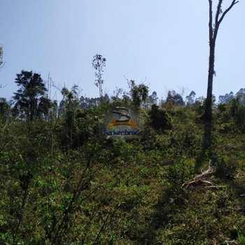 Terreno Rural em Pouso Redondo, bairro Santa Rita