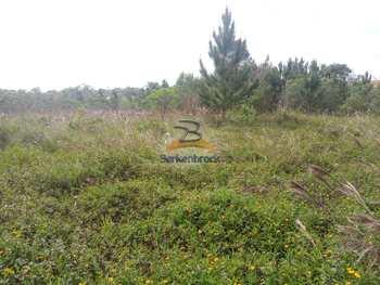 Terreno Rural, código 9715 em Laurentino, bairro Ribeirão Basílio