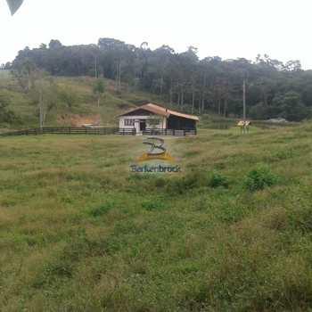 Sítio em Agronômica, bairro Alto Areado