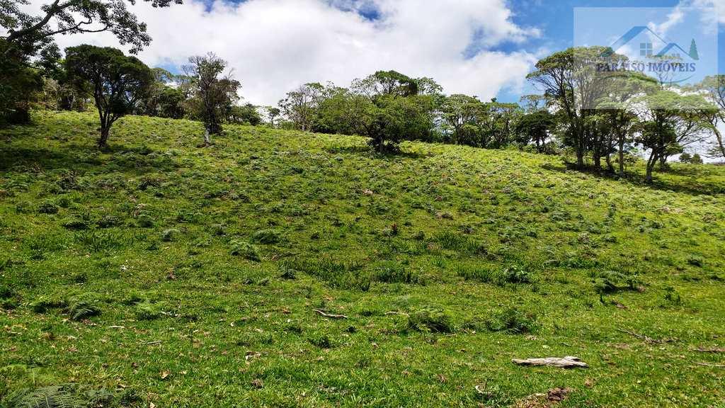Terreno Rural em Gonçalves, no bairro Terra Fria