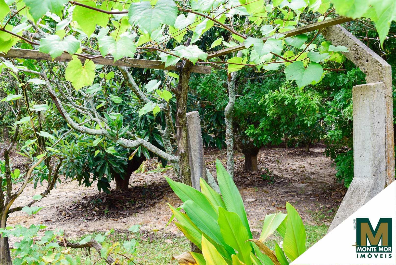 Chácara com 6 dorms - Chácara Recreio Planalto - Monte Mor