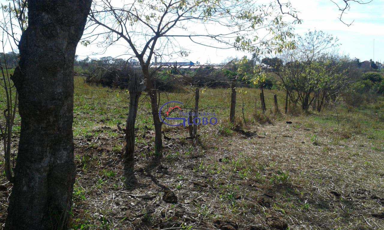 Sítio, Centro, Santa Salete - R$ 170 mil, Cod: 4576