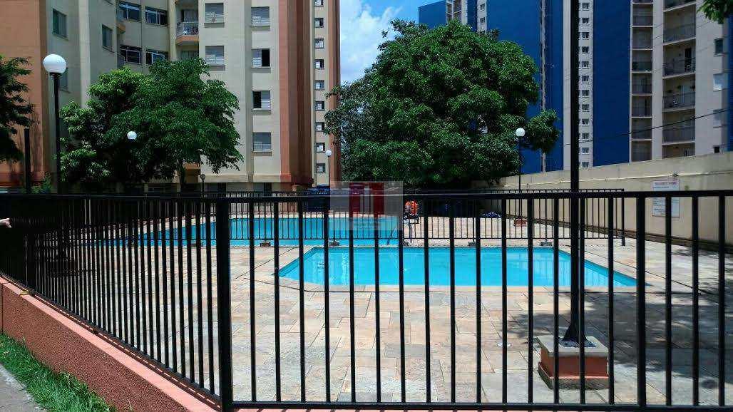 foto piscina amazonas