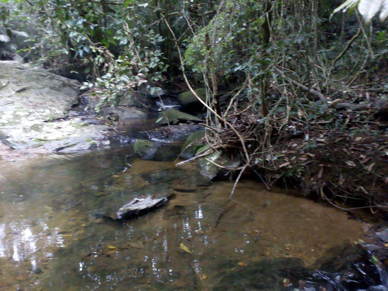 Sítio com 2 dorms, Cachoeiras, Cajati, 1.200 m da BR