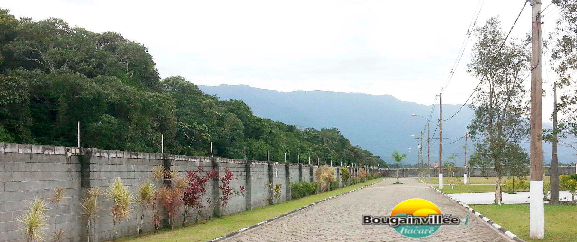 Bougainville 4 lazer 10