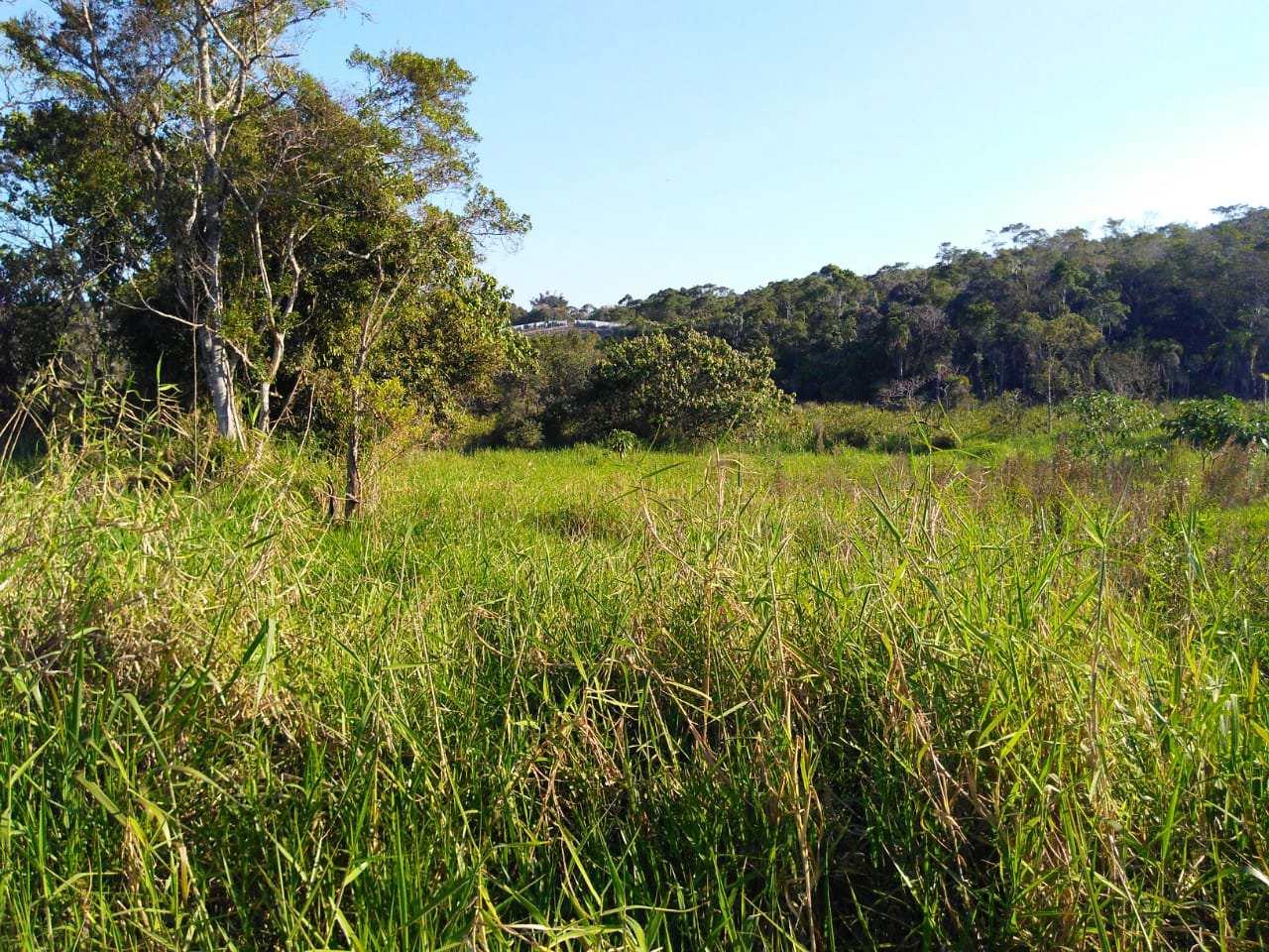 18.900 m², seu sitio esta aqui córrego, bom p/ plantar e lazer.