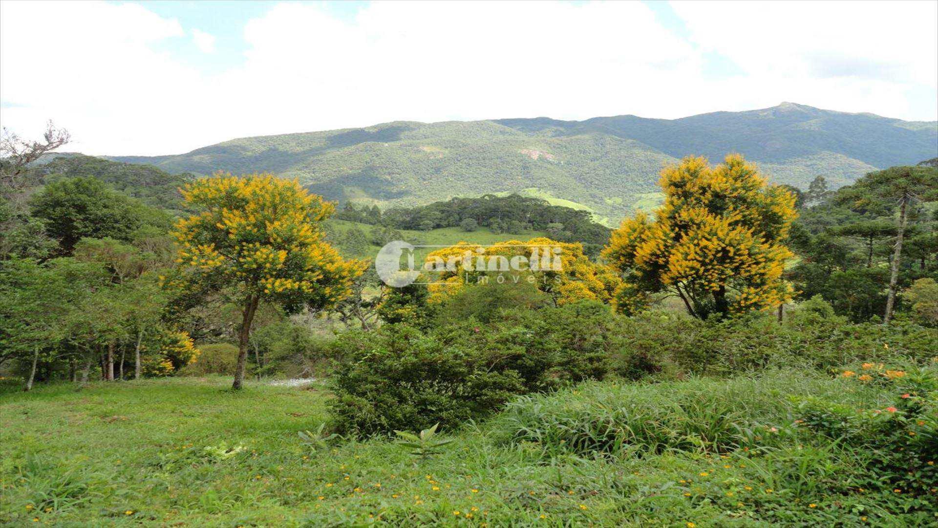 Sítio com 3 dorms, Zona Rural, Sapucaí-Mirim - R$ 600 mil, Cod: 589