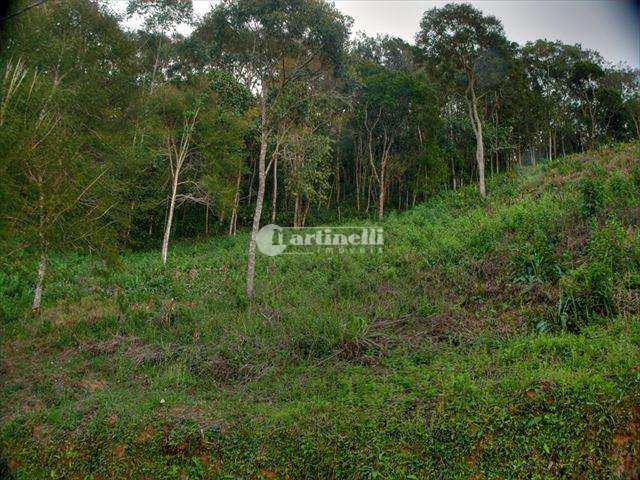 Terreno de Condomínio, Rio Preto, Santo Antônio do Pinhal - R$ 210 mil, Cod: 396