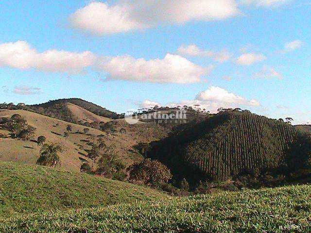 Sítio com 3 dorms, Zona Rural, Santo Antônio do Pinhal - R$ 2.5 mi, Cod: 526