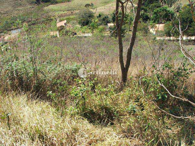 Terreno, Zona Rural, Santo Antônio do Pinhal - R$ 100 mil, Cod: 477
